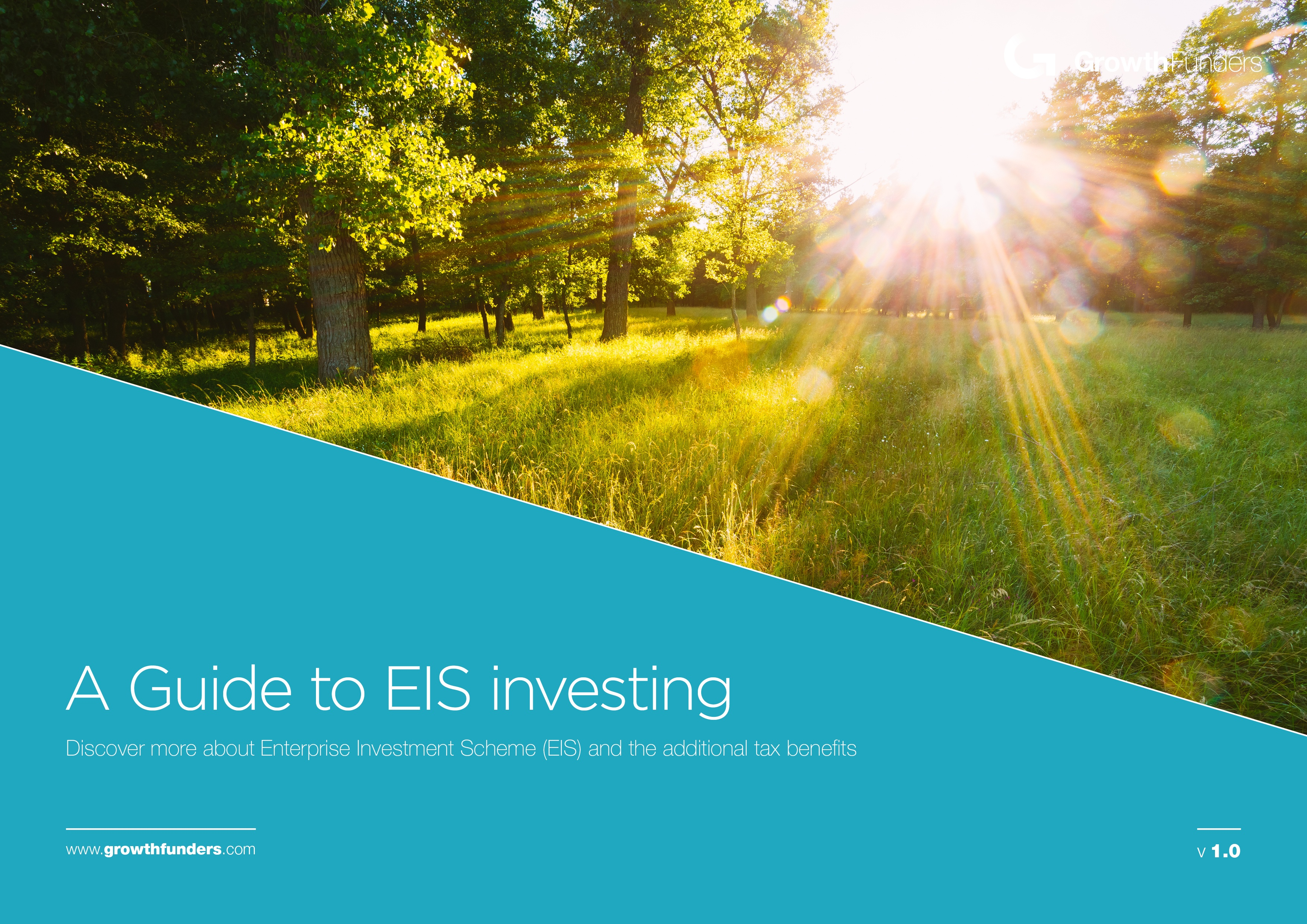 eis-guide.jpg