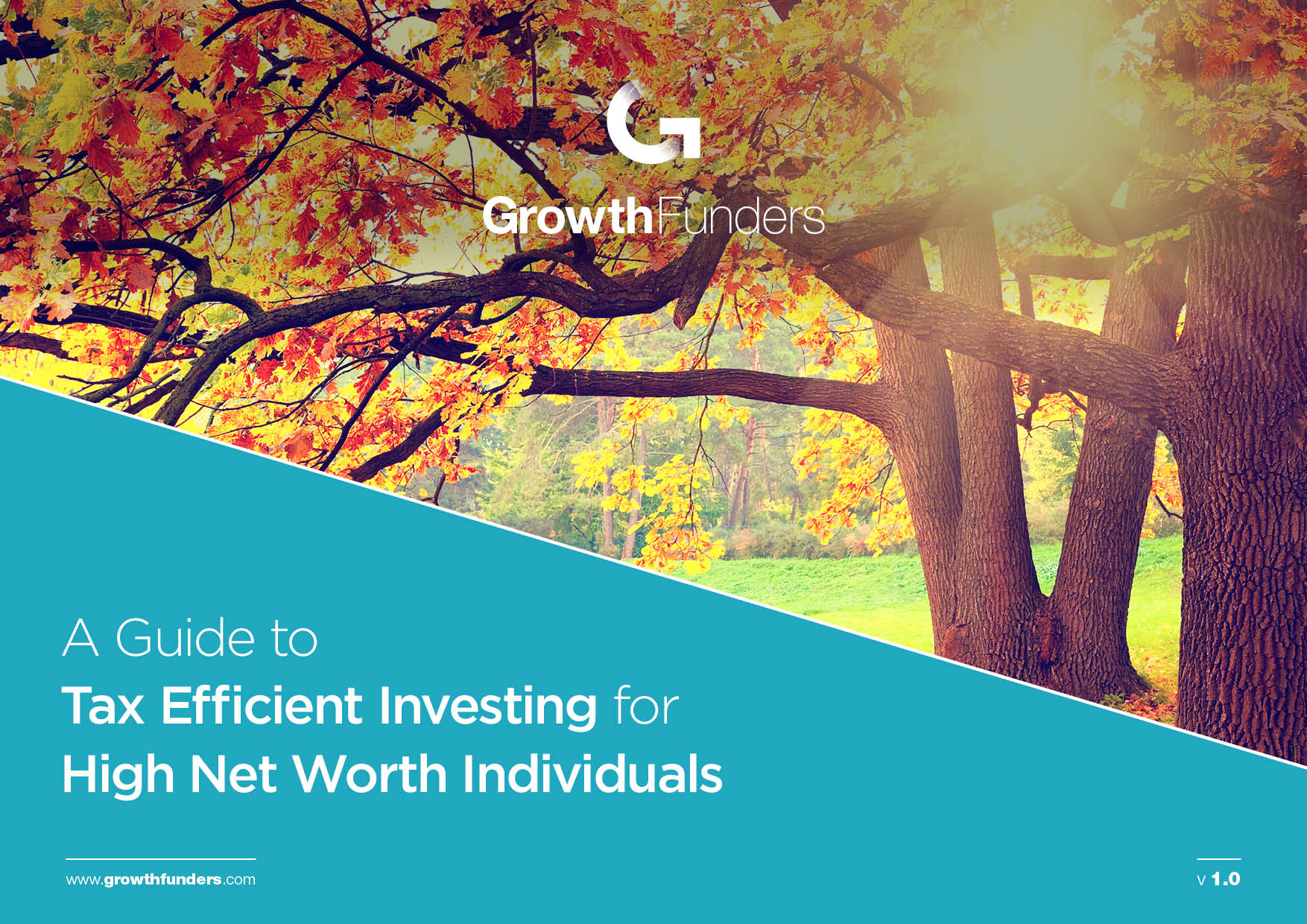 High Net Worth Individuals guide to Tax Efficient Investing COVER.jpg